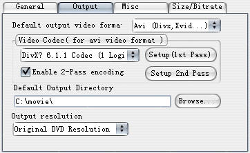 1 DVD Ripper - Some hints of increasing video quality